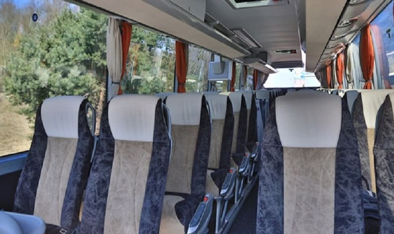 Germany: Coach charter in Lower Saxony in Lower Saxony and Helmstedt